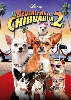 photo Le Chihuahua de Beverly Hills 2